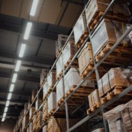 Lionpoint services for logistics